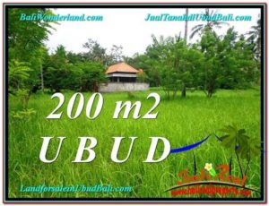 Affordable LAND FOR SALE IN Sentral Ubud BALI TJUB584