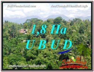Affordable PROPERTY LAND IN UBUD FOR SALE TJUB589