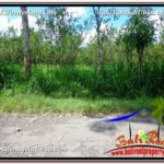 Affordable 4,770 m2 LAND FOR SALE IN UBUD BALI TJUB598