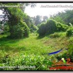 Beautiful LAND FOR SALE IN UBUD TJUB600
