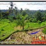 Beautiful LAND IN UBUD FOR SALE TJUB601