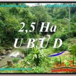 FOR SALE Beautiful PROPERTY 26,000 m2 LAND IN Sentral Ubud TJUB579