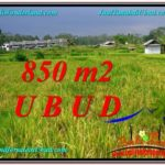 Magnificent LAND IN UBUD FOR SALE TJUB583