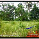 Beautiful UBUD LAND FOR SALE TJUB585