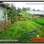 Affordable PROPERTY LAND FOR SALE IN UBUD TJUB586