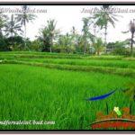 Affordable PROPERTY LAND SALE IN UBUD TJUB587