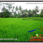 Affordable PROPERTY LAND SALE IN UBUD TJUB587