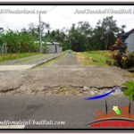 Affordable PROPERTY LAND FOR SALE IN UBUD TJUB588