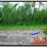 Beautiful PROPERTY Ubud Tegalalang 2,800 m2 LAND FOR SALE TJUB592