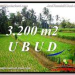 Beautiful PROPERTY LAND SALE IN UBUD TJUB594