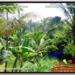 Affordable 1,800 m2 LAND SALE IN UBUD BALI TJUB597
