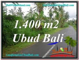 FOR SALE Exotic PROPERTY LAND IN Ubud Tegalalang BALI TJUB612