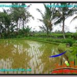 Affordable PROPERTY 1,822 m2 LAND SALE IN UBUD BALI TJUB574
