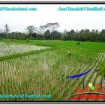 Exotic PROPERTY Ubud Payangan 920 m2 LAND FOR SALE TJUB575