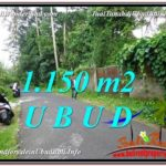 FOR SALE Exotic PROPERTY 1,150 m2 LAND IN UBUD BALI TJUB576
