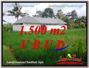 Magnificent 1,500 m2 LAND SALE IN UBUD BALI TJUB600