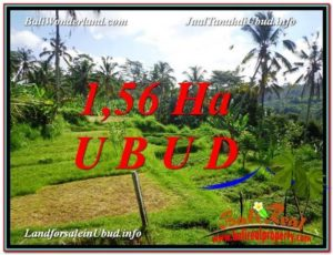 FOR SALE Magnificent 15,600 m2 LAND IN UBUD BALI TJUB601