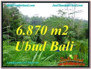Affordable 6,870 m2 LAND IN UBUD FOR SALE TJUB602