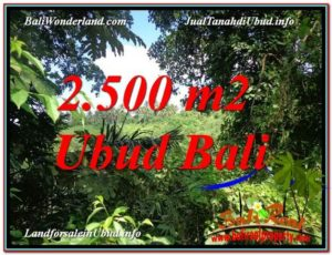 Affordable PROPERTY LAND FOR SALE IN UBUD TJUB605