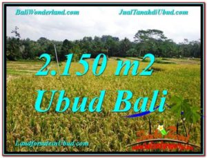 Affordable PROPERTY LAND FOR SALE IN Ubud Tegalalang BALI TJUB606