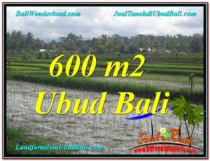 Exotic PROPERTY LAND IN UBUD FOR SALE TJUB607