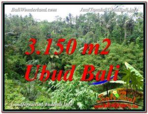 FOR SALE Beautiful 3,150 m2 LAND IN UBUD TJUB608
