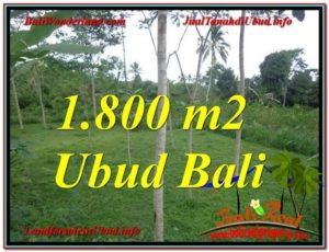 Exotic PROPERTY 1,800 m2 LAND IN UBUD BALI FOR SALE TJUB610