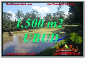 FOR SALE Beautiful PROPERTY 1,500 m2 LAND IN UBUD BALI TJUB630