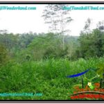 Magnificent 6,870 m2 LAND FOR SALE IN UBUD BALI TJUB602