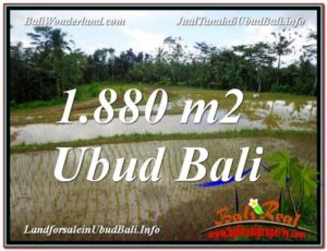 FOR SALE 1,880 m2 LAND IN UBUD TJUB613