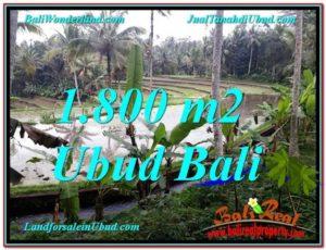 Exotic LAND IN Ubud Tampak Siring BALI FOR SALE TJUB616