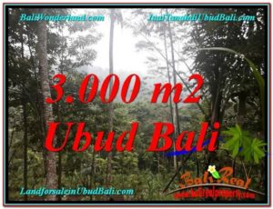 Exotic 3,000 m2 LAND IN UBUD BALI FOR SALE TJUB617