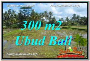 Magnificent UBUD BALI 300 m2 LAND FOR SALE TJUB619