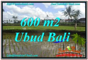 Beautiful 600 m2 LAND SALE IN UBUD BALI TJUB621