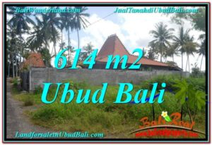 FOR SALE Affordable PROPERTY LAND IN Sentral Ubud BALI TJUB622