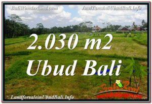 FOR SALE Affordable PROPERTY 2,030 m2 LAND IN UBUD BALI TJUB623