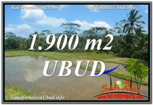 Beautiful PROPERTY Ubud Payangan 1,900 m2 LAND FOR SALE TJUB629