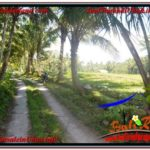 Beautiful PROPERTY 1,500 m2 LAND IN Ubud Payangan FOR SALE TJUB630