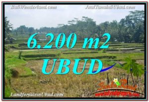 FOR SALE LAND IN Ubud Payangan BALI TJUB631