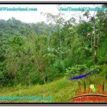 Affordable PROPERTY UBUD LAND FOR SALE TJUB603