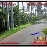 FOR SALE Exotic 1,000 m2 LAND IN UBUD TJUB604
