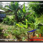 Affordable PROPERTY UBUD LAND FOR SALE TJUB605