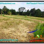 Affordable PROPERTY Ubud Tegalalang BALI LAND FOR SALE TJUB606