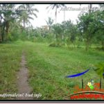FOR SALE Magnificent PROPERTY LAND IN UBUD TJUB609