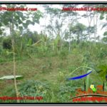 Exotic PROPERTY 1,800 m2 LAND SALE IN UBUD BALI TJUB610