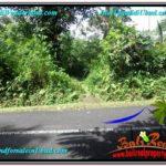 Beautiful PROPERTY LAND FOR SALE IN UBUD BALI TJUB611