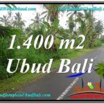 Beautiful PROPERTY UBUD LAND FOR SALE TJUB612