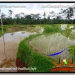 1,880 m2 LAND IN UBUD BALI FOR SALE TJUB613