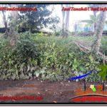 Affordable UBUD BALI 1,400 m2 LAND FOR SALE TJUB615