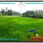 Exotic LAND SALE IN Ubud Tampak Siring BALI TJUB616